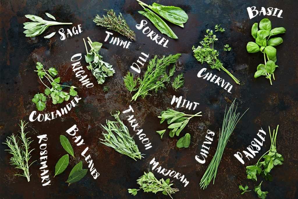 new moon herbs