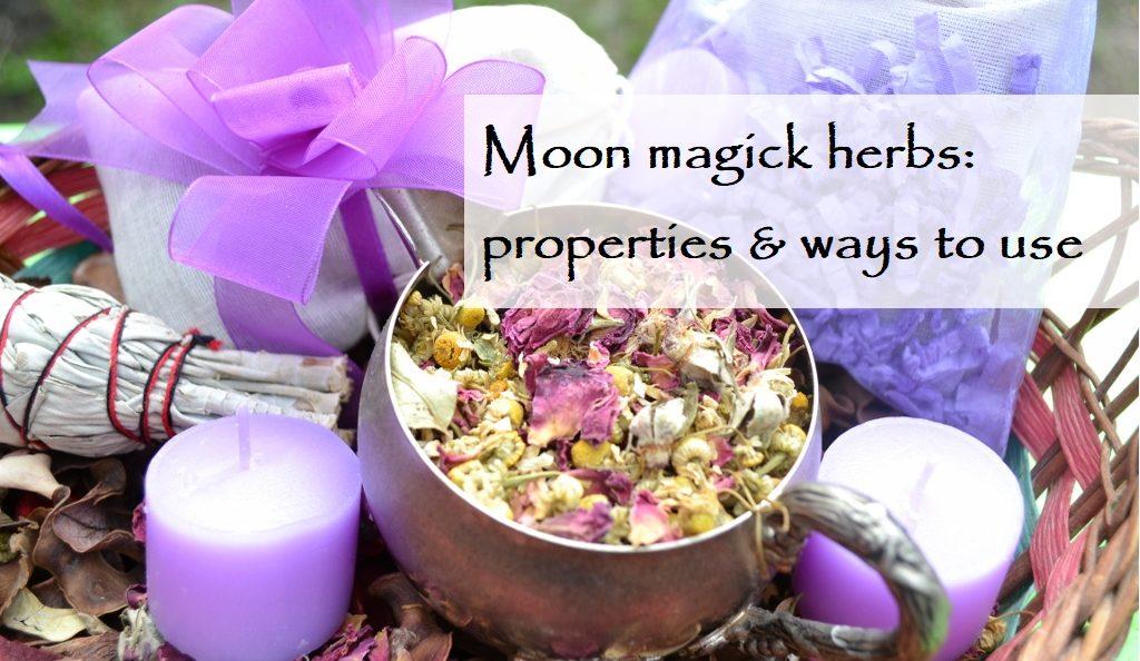 moon magick herbs