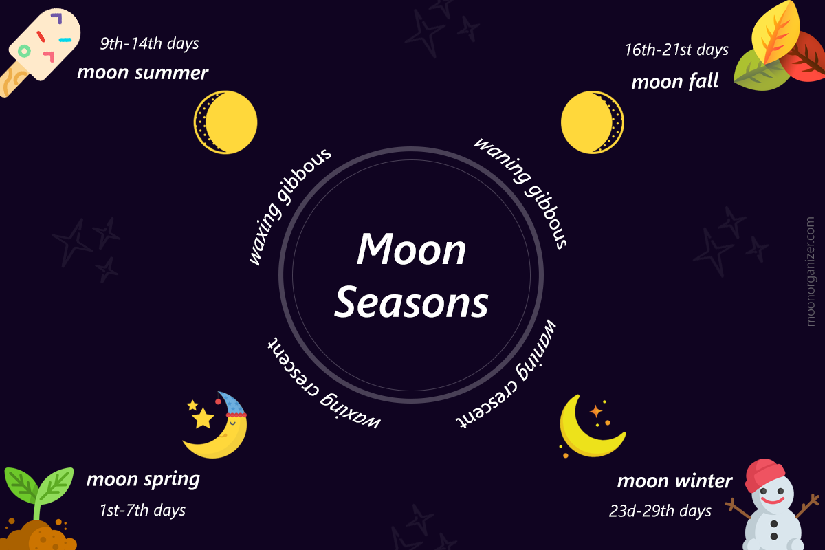 moon seasons infographic